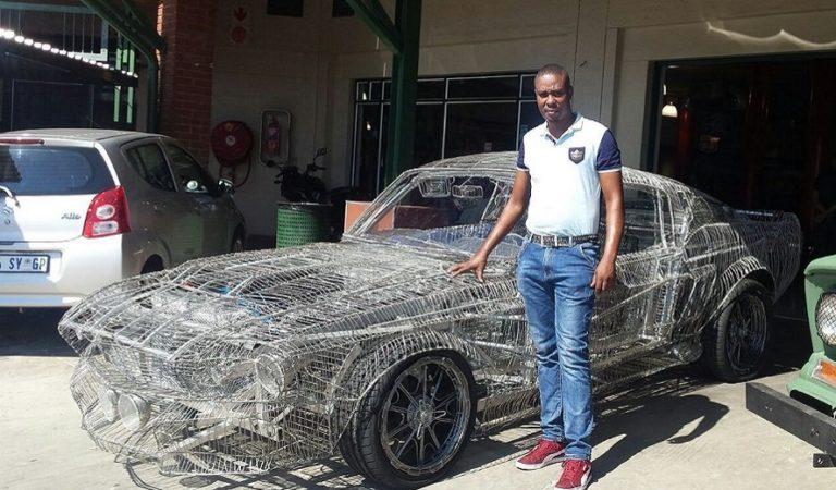In Sud Africa un uomo ha ricostruito 'Eleanor' con del filo di ferro