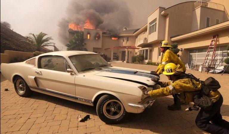 In California i pompieri hanno salvato dagli incendi una rara Mustang Shelby GT 350