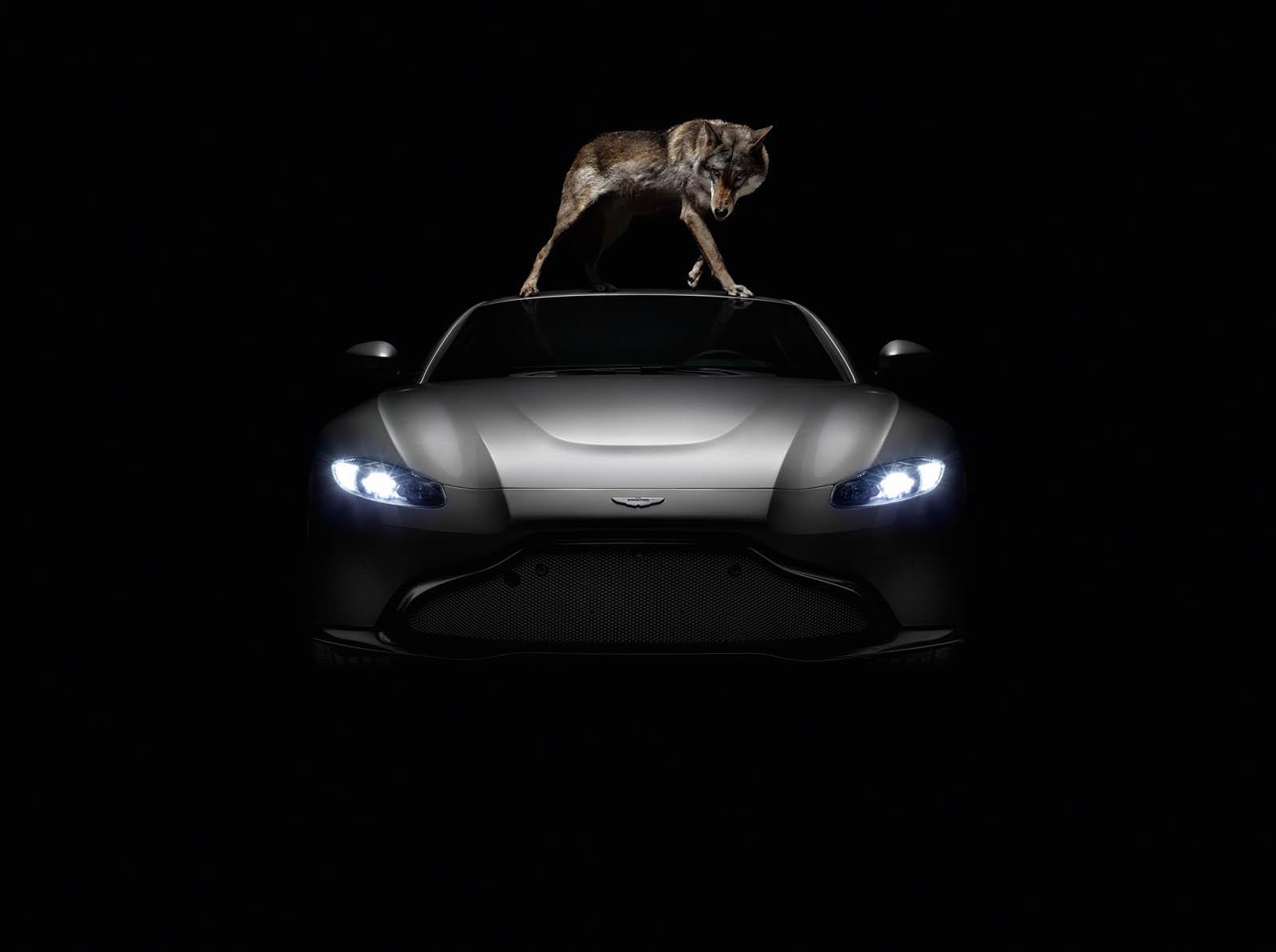 Aston Martin Vantage - Foto Rankin