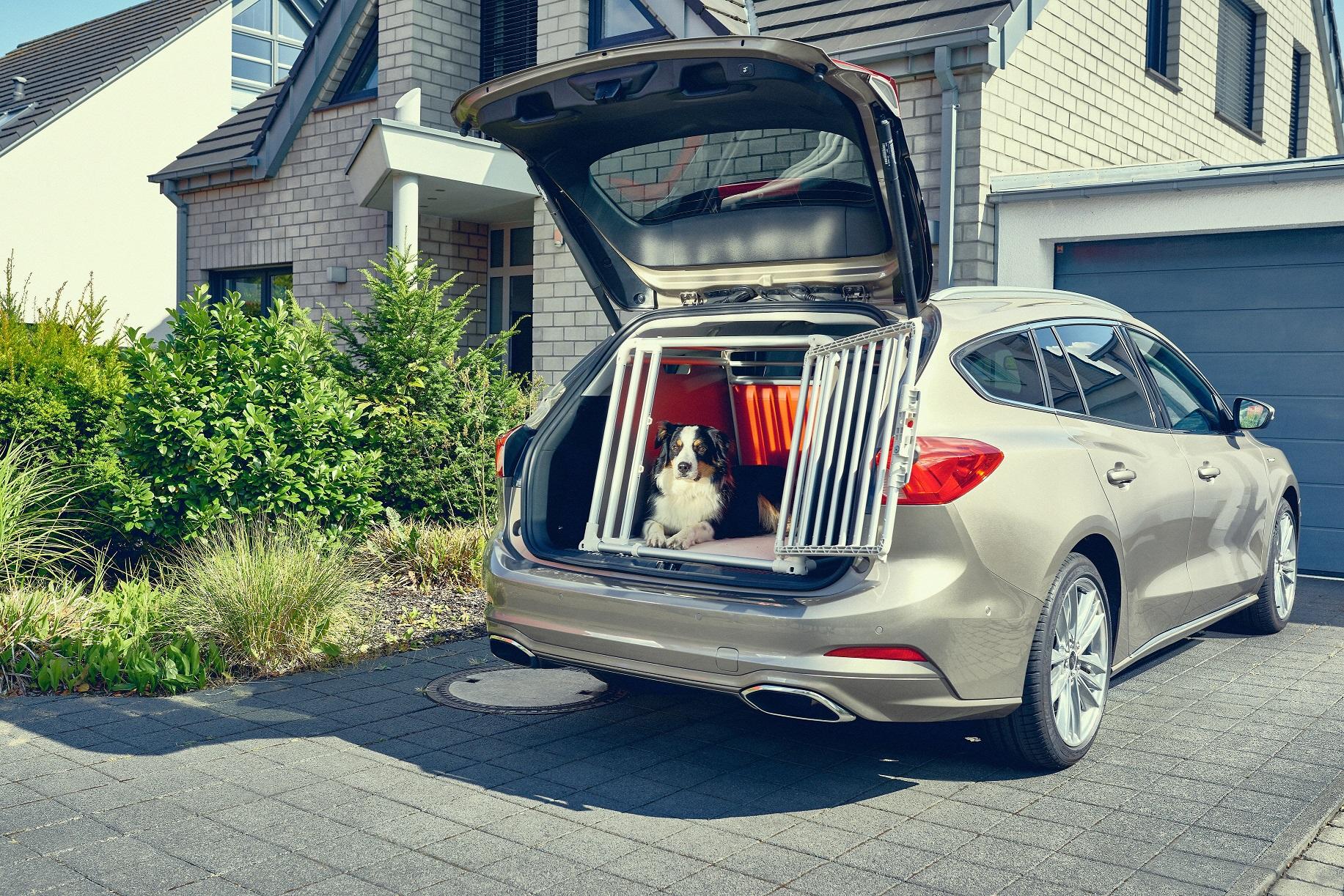 Ford Focus wagon - Dog box