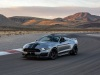 Ford Shelby Super Snake Speedster