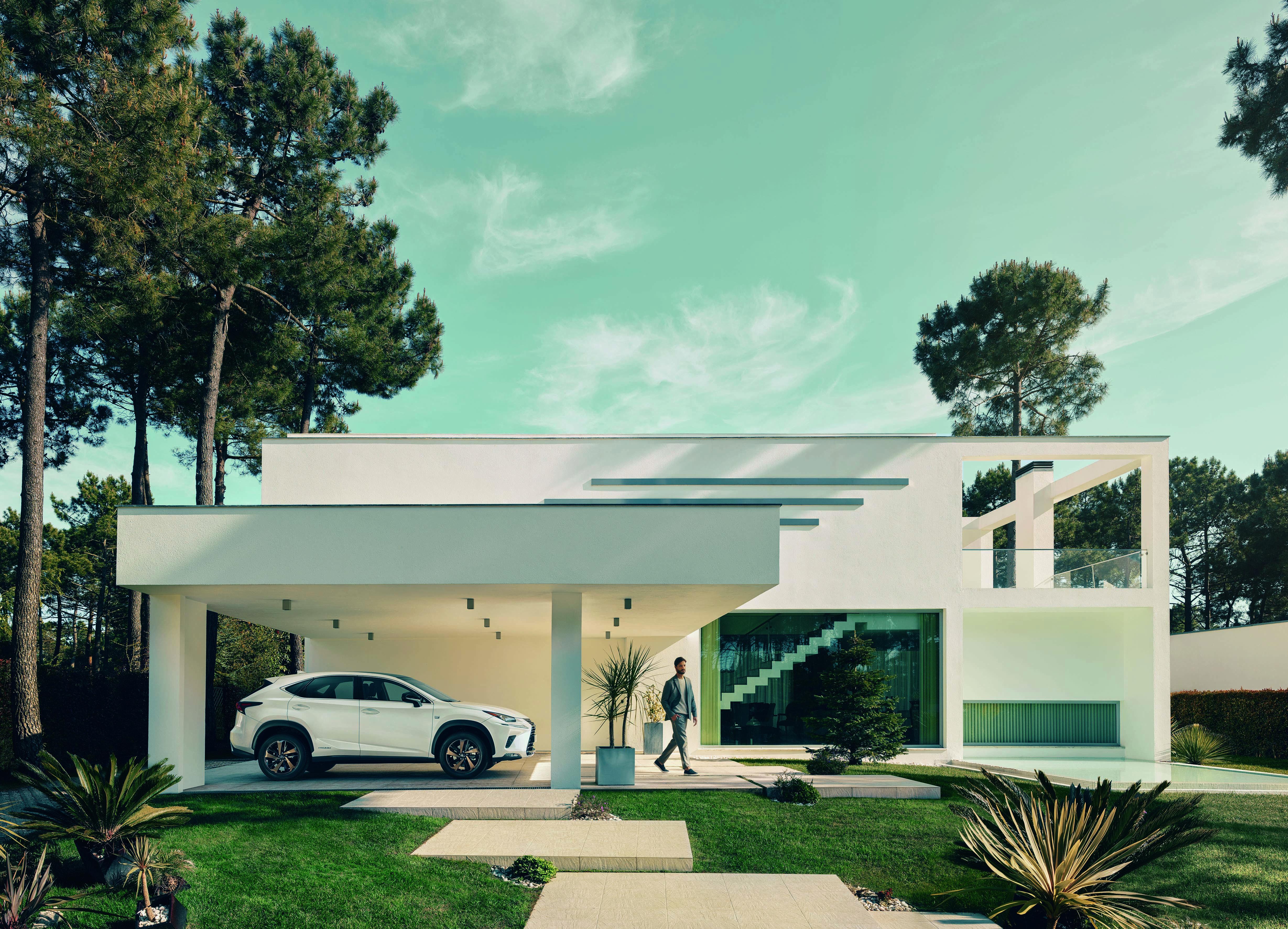 Lexus NX Pack Sport