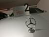 Mercedes E220d Tribute Ponton 1956