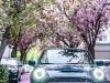 Mini Cabrio Sidewalk - Foto ufficiali