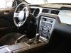 Mustang gamma 2013