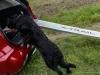 Nissan X-Trail Trainer con Schatz