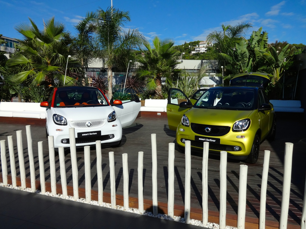 Nuova Smart ForTwo e Smart ForFour MY 2014 - Primo Contatto