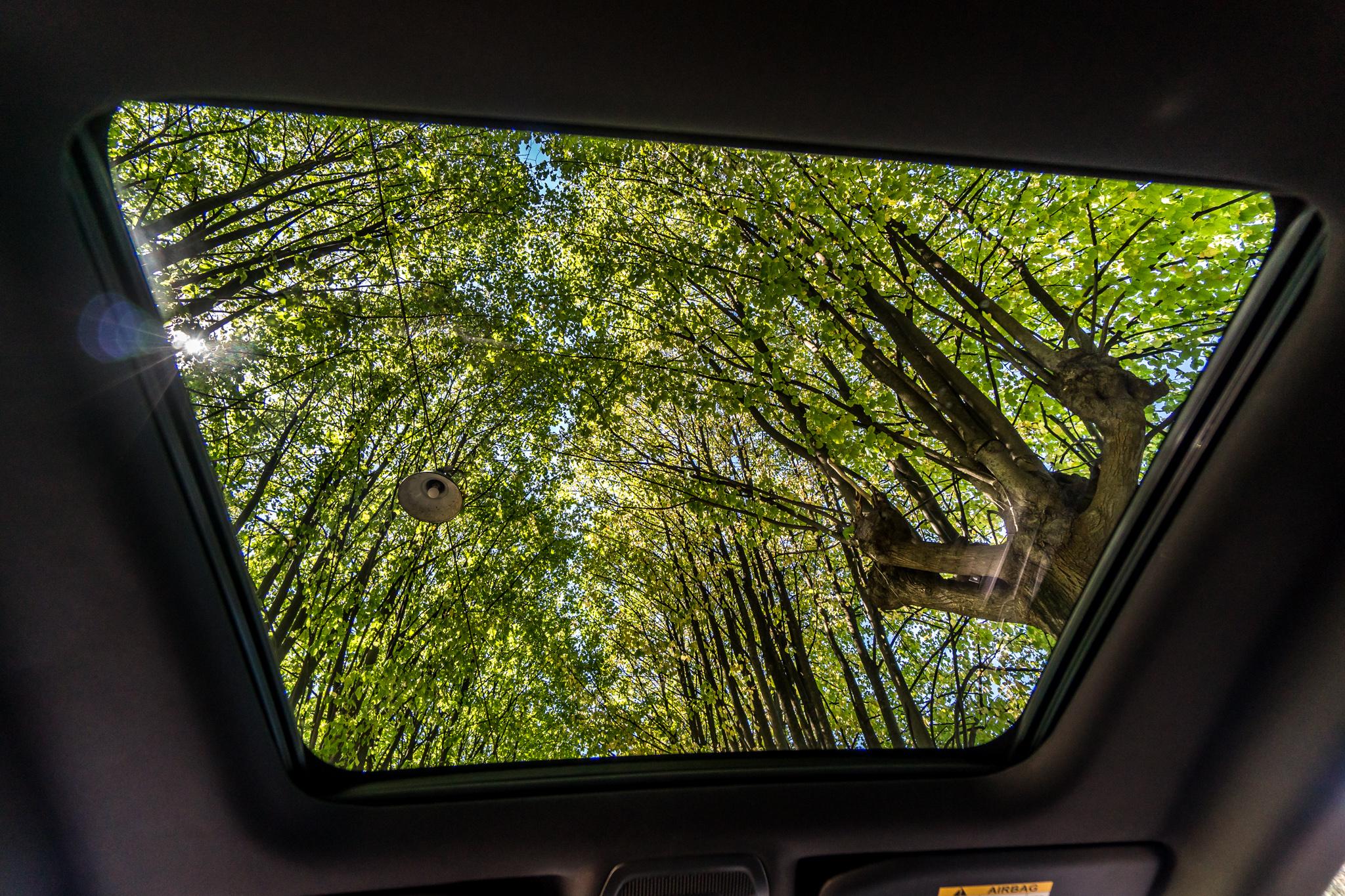 Peugeot 508 SW sulla strada del Prosecco