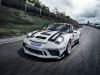 Porsche Carrera Cup - Usain Bolt