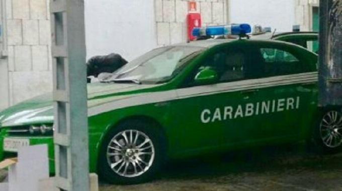 Carabinieri, il parco auto è pronto a tingersi di verde [FOTO]