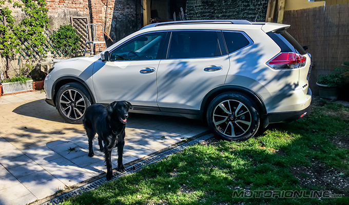 "Nissan X Trail For Dogs >> Nissan X-Trail 4Dogs, il crossover a quattro ""zampe"" motrici [VIDEO TEST DRIVE]"