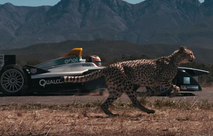 Formula E, nello spot di lancio la monoposto elettrica sfida il ghepardo in velocità [VIDEO]