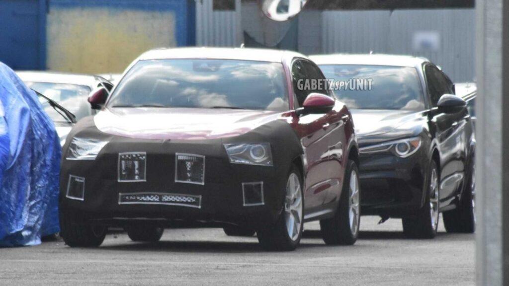 """Maserati Grecale: il nuovo """"baby"""" SUV mascherato da Alfa Romeo Stelvio [FOTO SPIA]"""