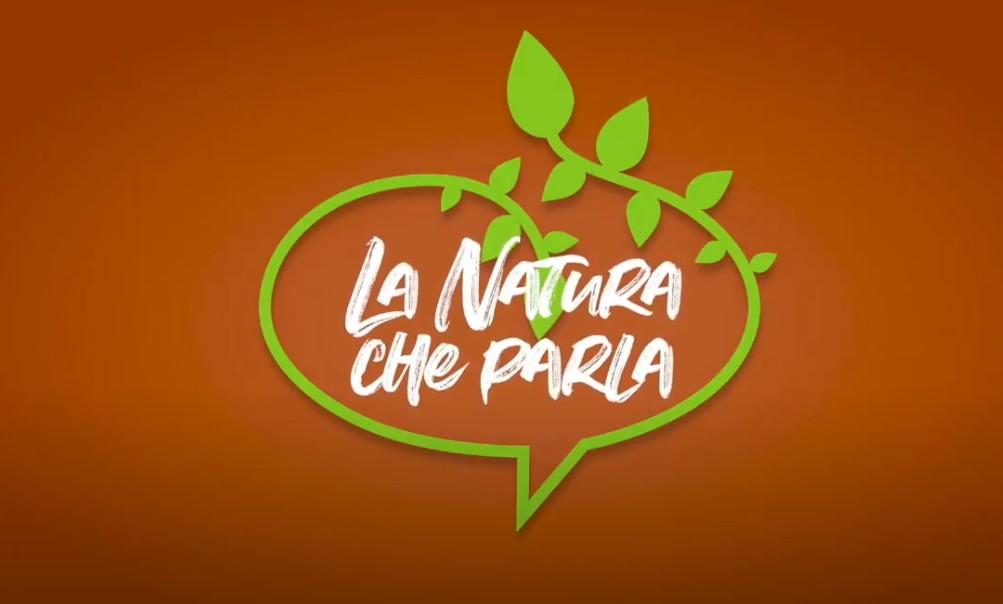 Kia: le elettriche protagoniste de 'La natura che parla'