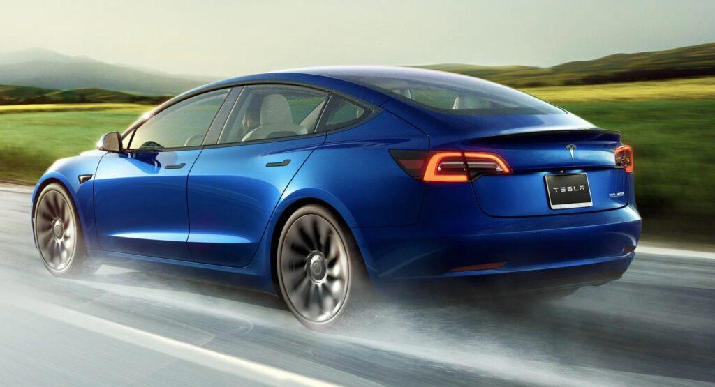 Ecco perché ai topi piace rosicchiare le Tesla: un problema più che diffuso in America [VIDEO]